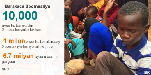 _98948797_datapic-somalia_idp_som-pf8tb-nc.png